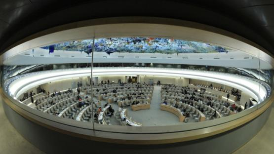 Rights organisations call on UN Human Rights Council to establish Special Rapporteur on the Right to Privacy