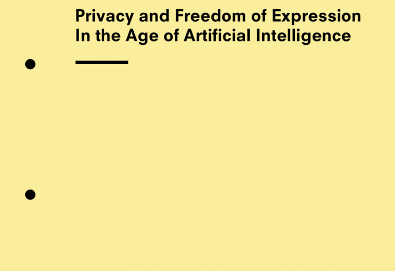 Privacy and Freedom of Expression In the Age of Artificial Intelligence