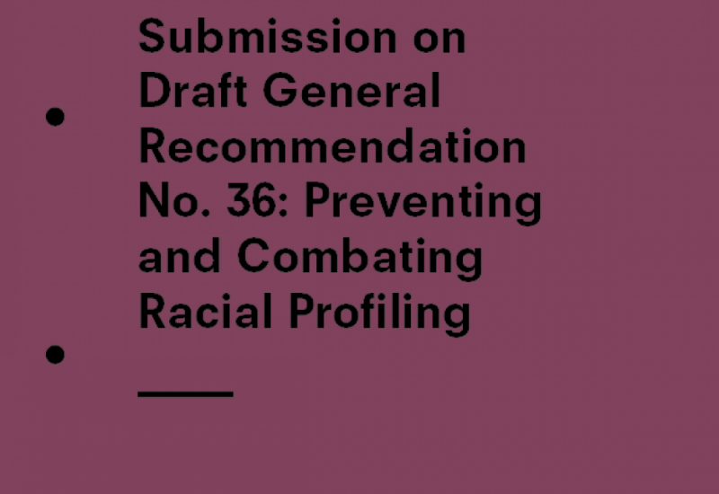 Submission cover CERD