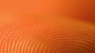 Council of Europe refuses to investigate biometrics privacy