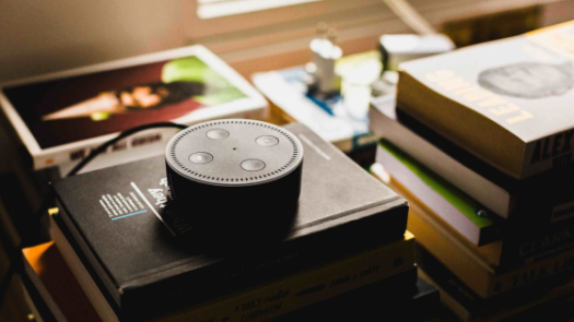 amazon echo on books