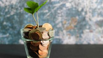Flower pot with coins